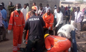 Suicide bomber kills one, injures four in Borno