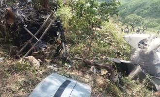 Father, son killed in Zimbabwe plane crash