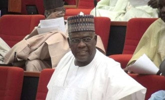 More intrigues over senate presidency as group endorses Goje