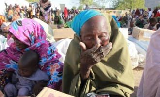 Over five million Boko Haram victims need food assistance, says UN