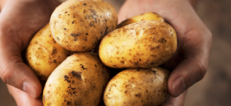 For body and skin health: Why you should eat potatoes