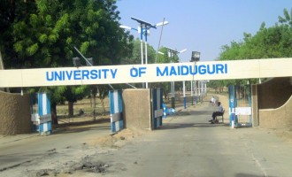 Teenage suicide bomber shot dead around UNIMAID (updated)