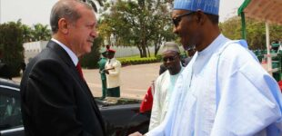 I believe Nigeria will support Palestine against Israel, Erdogan tells Buhari