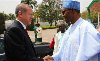 I believe Nigeria will support Palestine against Israel, Erdogan tells Buhari