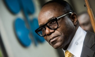 Kachikwu not 'interested in governing Delta'