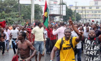 'If you vote, you will die' — IPOB threatens Anambra voters