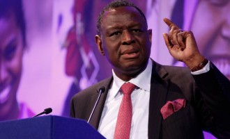 Osotimehin, former minister of health, is dead