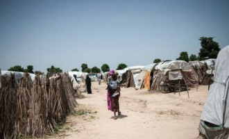Police: We are investigating sexual violence in Borno IDP camps