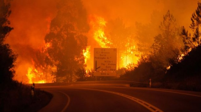 Deadly wildfire kills 64 in Portugal (updated)