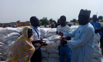 FAO supports IDPs with agric inputs