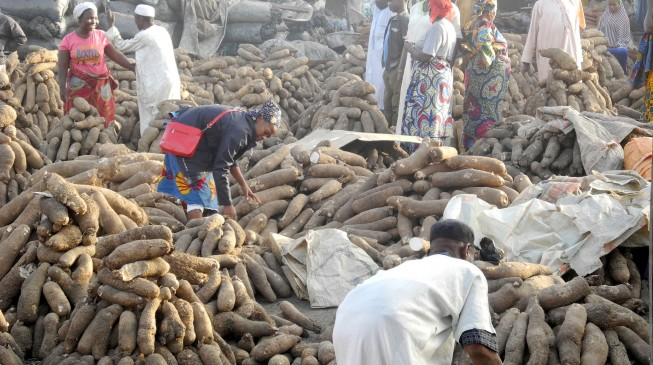 Ogbeh: Export of yam to UK, US won't lead to scarcity