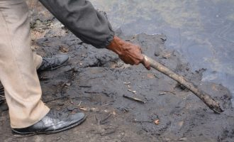 Ogoni clean-up exercise to commence August, says minister