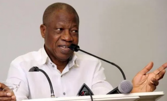 Lai: There can't be a substitute for Buhari