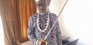 'Your fall is near' — Ohanaeze youth tackles Nnamdi Kanu