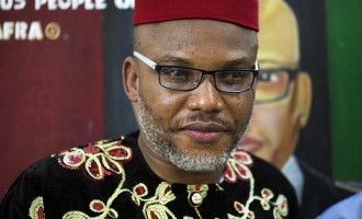 'Your defence is porous' — Nnamdi Kanu offers to give Atiku legal advice over Cameroon debate