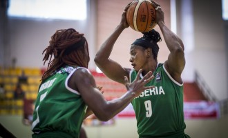 D'Tigress get 'tough' opponents for 2020 Olympic ticket