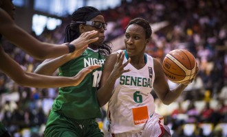 Senegal vs Nigeria: Highlights from FIBA Afrobasket final
