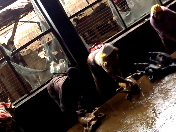 Dirty room for washing meat