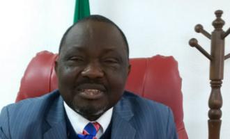 Edo assembly sacks speaker