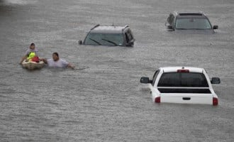 'No Nigerian died in Hurricane Harvey'