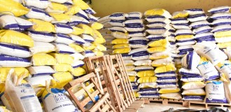 Fact checking Audu's claim and proffering solutions to rice importation