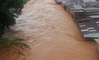 Mudslide buries over 300 in Sierra Leone (updated)