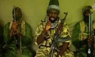You are not safe, Shekau warns Maiduguri residents