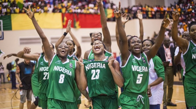 World Cup: African champions D'Tigress to face Argentina, Australia in Group B