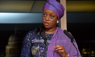 Diezani as only female president, Nigeria as 'biggest leader'… 7 things to know about OPEC at 57