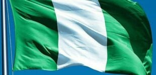 Nigeria; a nation in dire need of patriots