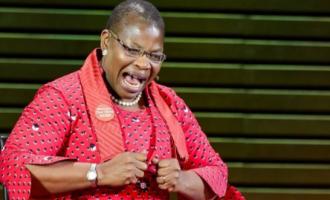 Oby Ezekwesili 'seriously praying' for warring Psquare