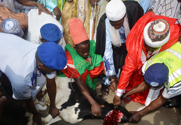 Chief Imam of the Hausa Community in Agege, Sheikh Habib Abdulmajid, slaughtering a ram during the Eid el-Kabir celebration Eid Ground in Ikeja , Lagos