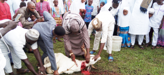Shehu of Bama: We're happy to celebrate Sallah at home for the first time in 5 years