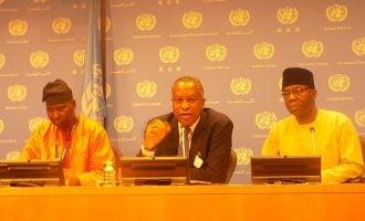 Nigeria says UN security council is undemocratic