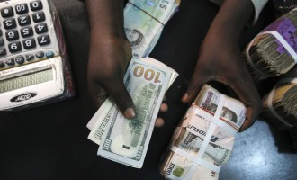 CBN gives banks four weeks to open forex sales point