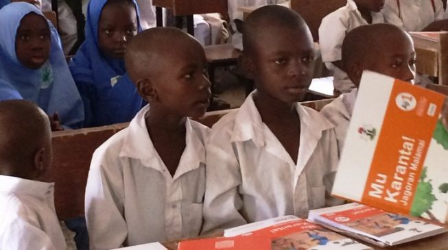 Number of out-of-school children in Sokoto 'drops by half'