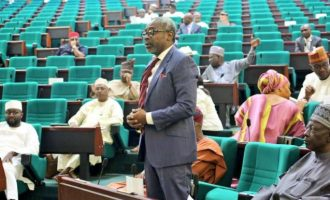 Speakership: Gbaja, Bago and the growing resentment of political oracles
