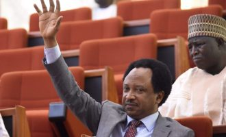 Shehu Sani: Demand a written agreement if your zone is promised power in 2023