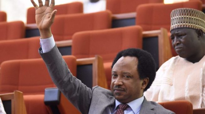 EXTRA: Looters list should include players of Umbrella Utd and Broomers FC, says Shehu Sani