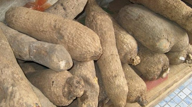 From crude oil to yam: The ridiculous attempts to diversify the economy