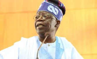 Tinubu the Ap'ejalodo and his strange fish friend