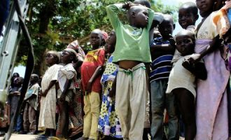 Report: About 60% of IDPs in Africa are children