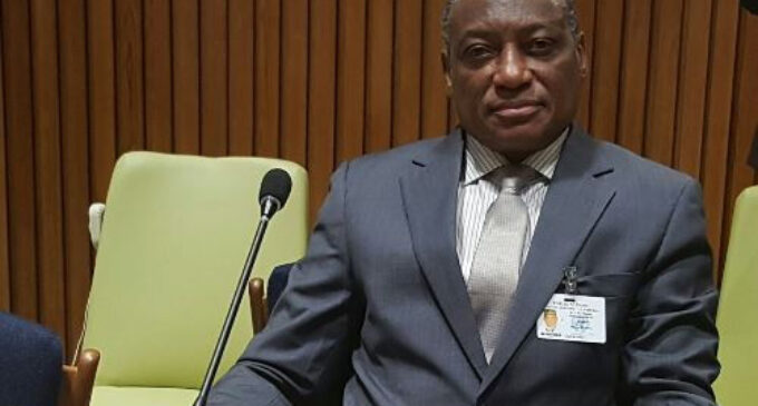 Senate summons defence minister over Cameroonian troops' 'incursion' into Nigeria