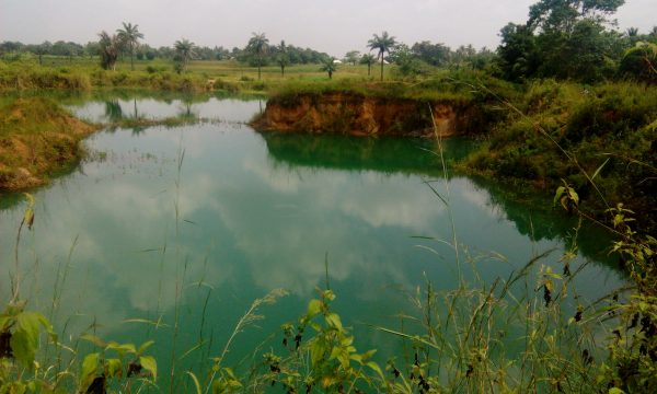 One of the 72 abandoned pits in Ebonyi state... now a death trap