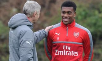 Wenger: Iwobi is a pleasure to work with… the boy loves football