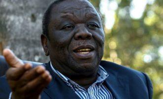 Zimbabwe crisis: Mugabe must resign immediately, says opposition leader