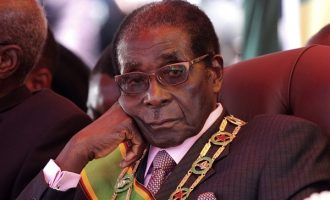 Mugabe could be sacked 'if he becomes stubborn'