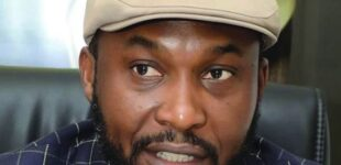 Osita Chidoka: Why 2023 presidency slot should be zoned to south-east