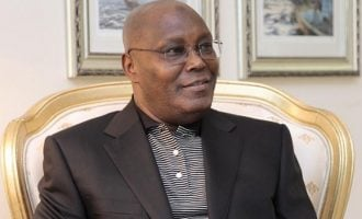 Atiku cannot win any election — even in his local govt, says Buhari's aide