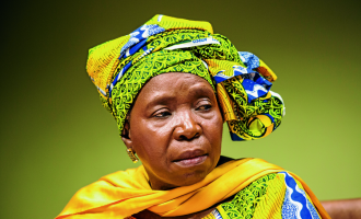 Dlamini-Zuma: How women suffer from men's wrongdoings